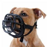 museliere-cuir-chien-loi-montreal-pitbull