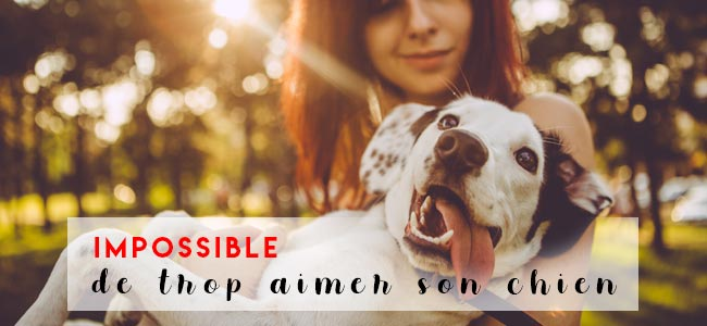 amour-chien-science